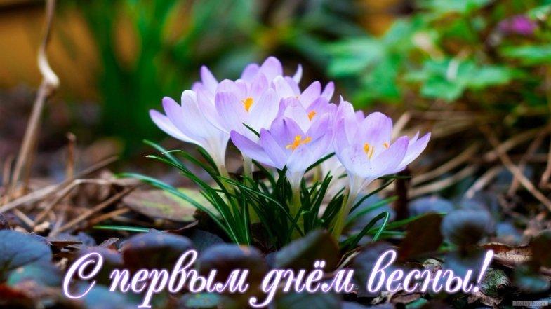 С Первым Днем Весны - красивые и прикольные картинки, скачать 8