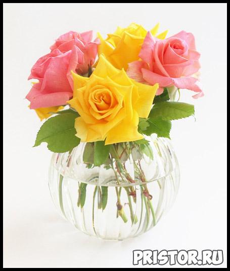 Как почистить хрустальную вазу от налета в домашних условиях 1