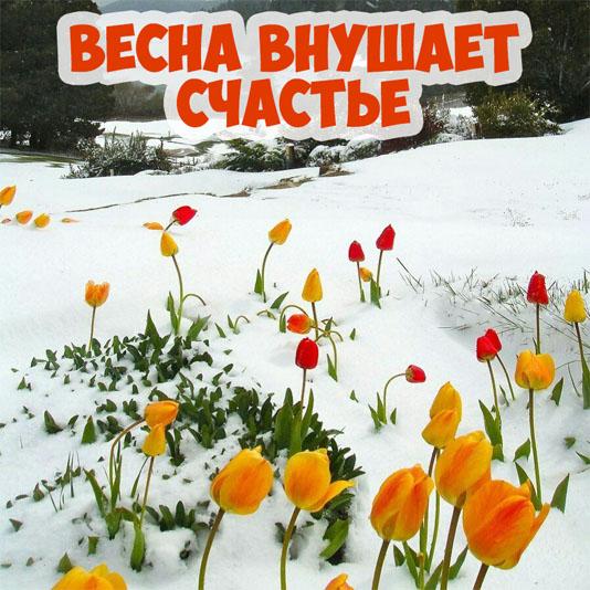 Картинки про весну красивые и интересные - прикольная подборка 13