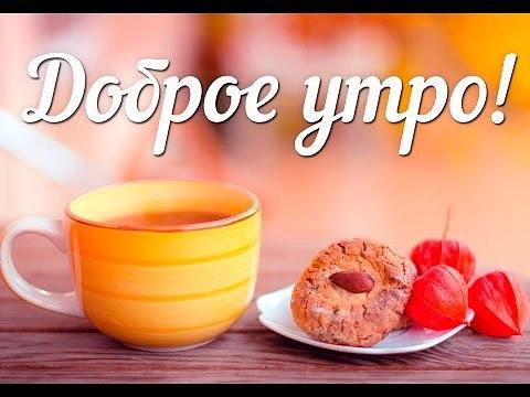 Картинки с весенним добрым утром и днем - красивые и прикольные 10