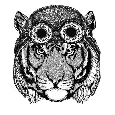 Картинки тигра для срисовки карандашом - красивые и прикольные 12
