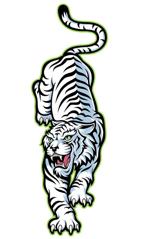 Картинки тигра для срисовки карандашом - красивые и прикольные 14