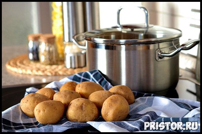 Картофель в рационе - плюсы и минусы, чем он полезен для человека 1