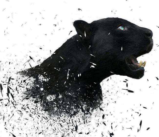 Красивые картинки на аву пантера - самые прикольные и классные 16