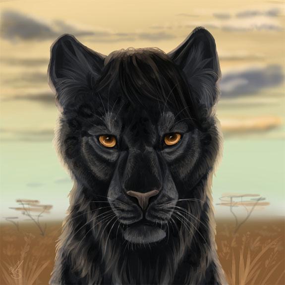 Красивые картинки на аву пантера - самые прикольные и классные 17