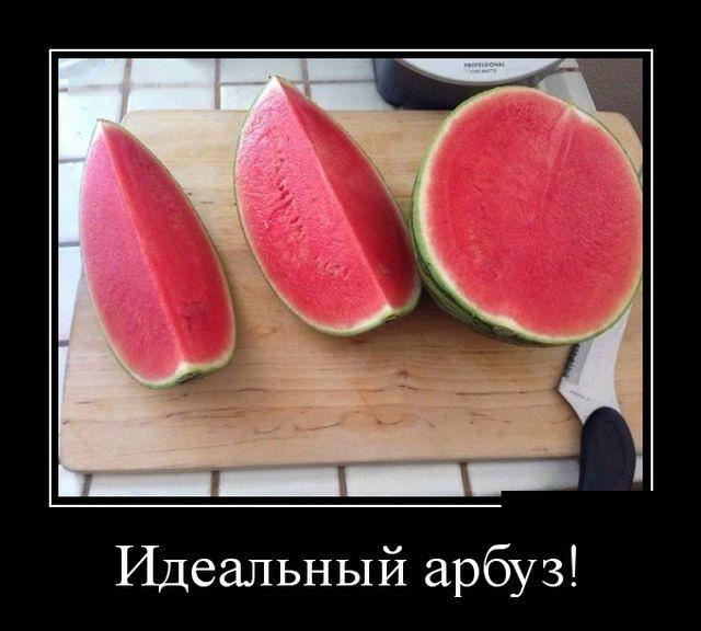 Подборка смешных и прикольных демотиваторов за апрель - лучшие №27 2