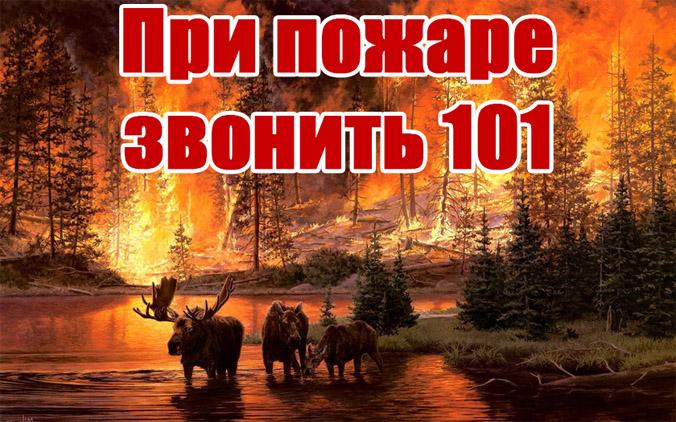 При пожаре звонить 101 картинки - скачать и распечатать, красивые 1