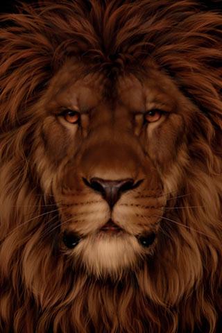 Скачать картинку лев на телефон на главный экран - лучшая сборка 11