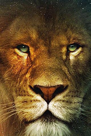 Скачать картинку лев на телефон на главный экран - лучшая сборка 14