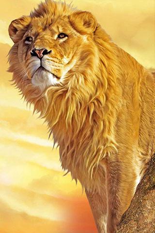 Скачать картинку лев на телефон на главный экран - лучшая сборка 8