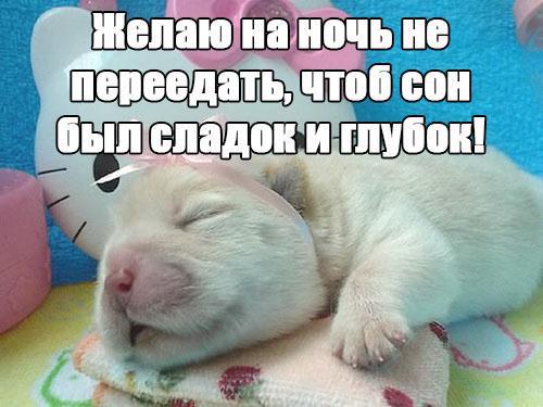 Спокойной ночи картинки - прикольные и смешные с надписями 10