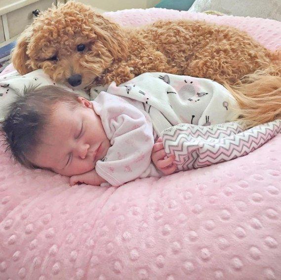 Спящий ребенок картинки и фотографии - самые красивые и милые 2