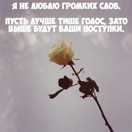 Статусы и цитаты про любовь до слез со смыслом - лучшая сборка 2