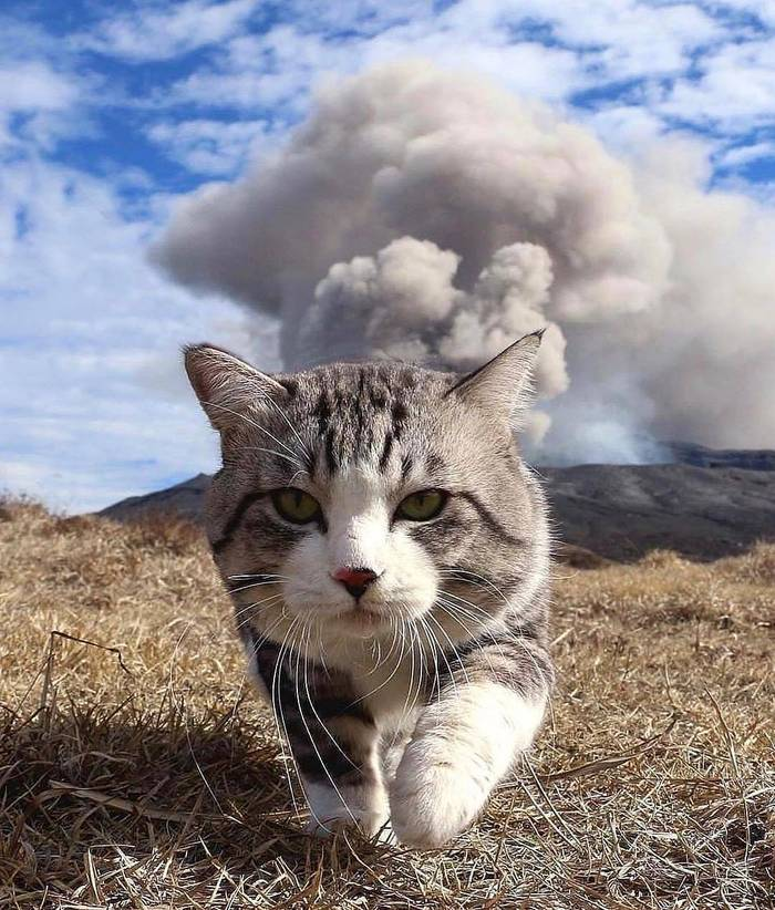Извержение вулкана, землетрясения, лава - красивые снимки и фото 2