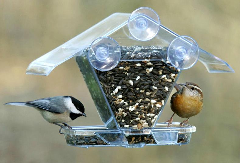 Как сделать кормушку для птиц своими руками - идеи из дерева, бутылки, коробок 2