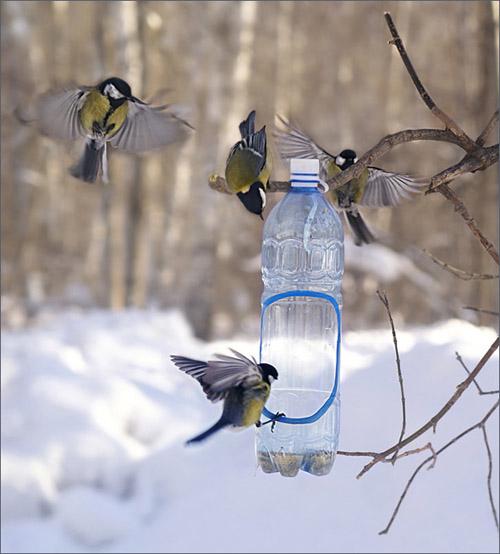 Как сделать кормушку для птиц своими руками - идеи из дерева, бутылки, коробок 23