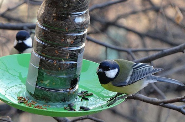 Как сделать кормушку для птиц своими руками - идеи из дерева, бутылки, коробок 7