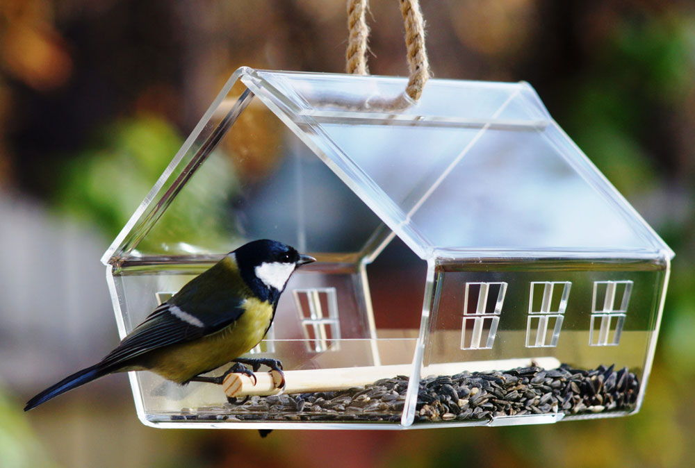 Как сделать кормушку для птиц своими руками - идеи из дерева, бутылки, коробок 9