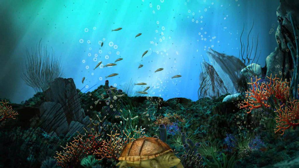 Картинки на рабочий стол аквариум - красивые и прикольные 2