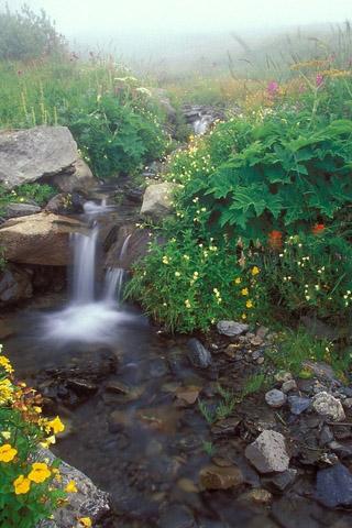 Картинки на телефон водопады и водопад - самые красивые 5