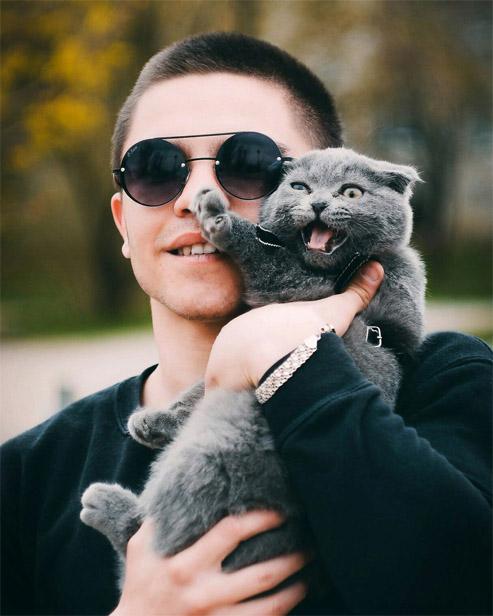 Красивые и прикольные фото кошек - лучшая подборка 19