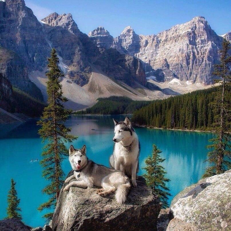Красивые и удивительные картинки природы - прикольная коллекция 3