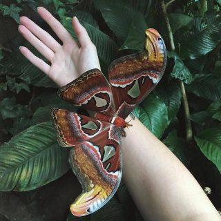 Красивые и удивительные картинки природы - прикольная коллекция 7