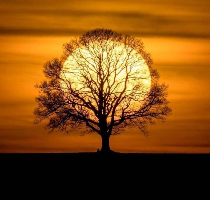 Красивые картинки, как люди держат Солнце руками - подборка 4