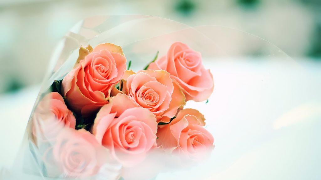 Красивые картинки роз на весь экран на рабочий стол - подборка 12