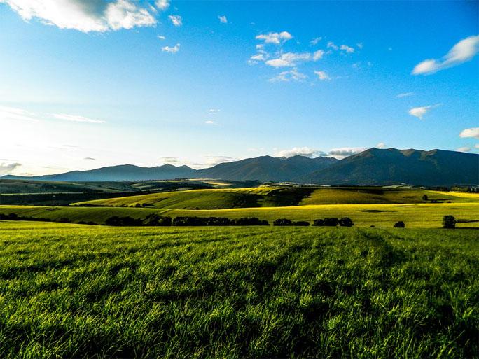 Красивые летние пейзажи природы - удивительные фотографии 11
