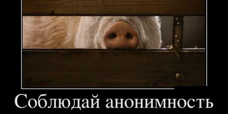 Лучшие смешные и ржачные демотиваторы за конец мая 2018 - сборка №31 5