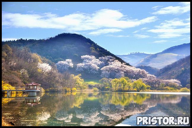 Основные корейские фразы и слова с переводом и транскрипцией. Корейские фразы для общения 4