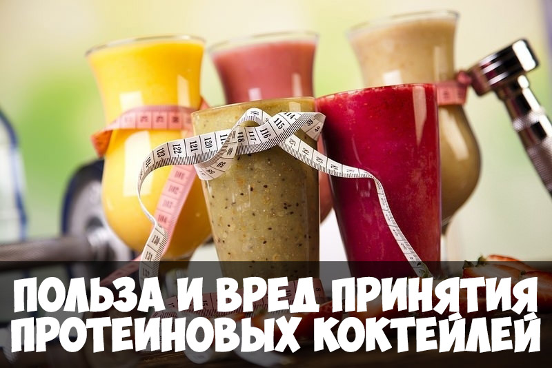 Польза и вред принятия протеиновых коктейлей - зачем его принимать 1
