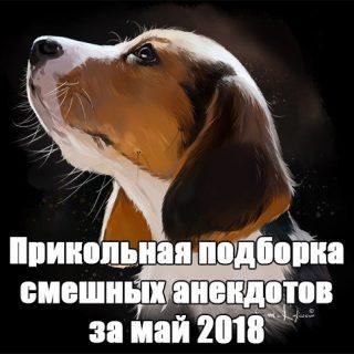 Прикольная подборка смешных анекдотов за май 2018 №106 заставка