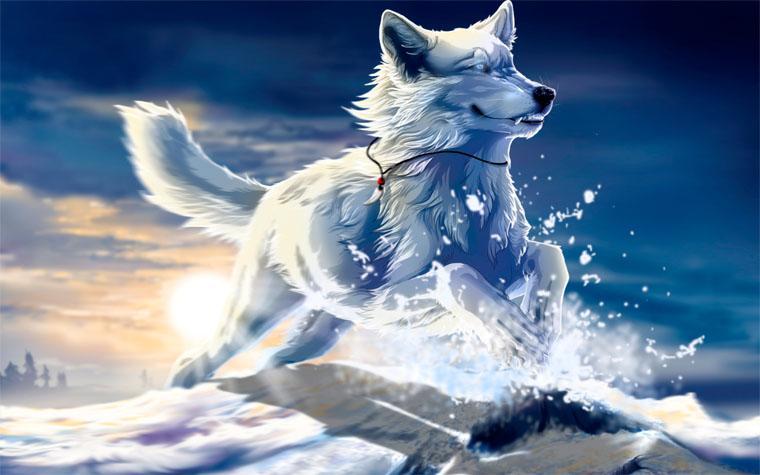 Прикольные и красивые арт картинки волка. Нарисованный волк, фэнтези 12
