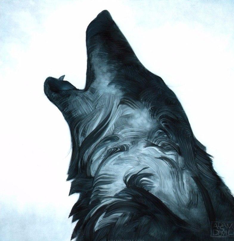 Прикольные и красивые арт картинки волка. Нарисованный волк, фэнтези 16