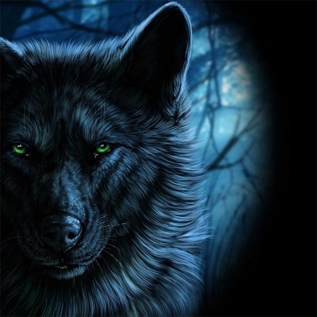 Прикольные и красивые арт картинки волка. Нарисованный волк, фэнтези 20