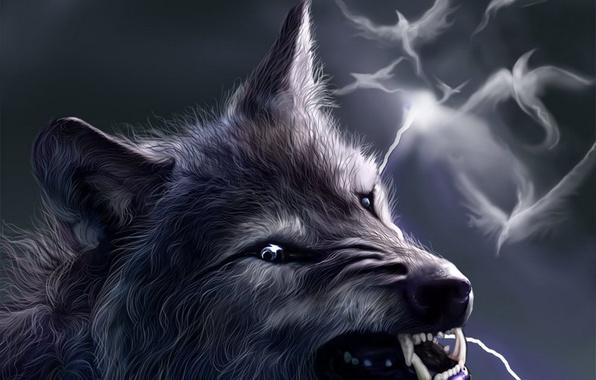 Прикольные и красивые арт картинки волка. Нарисованный волк, фэнтези 5