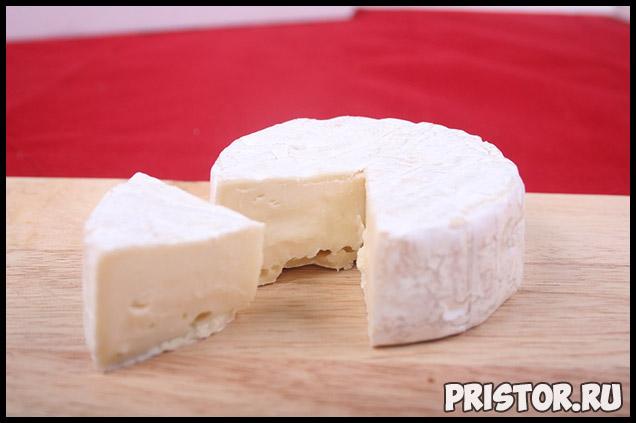 Как долго можно хранить свой любимый сыр в холодильнике 3