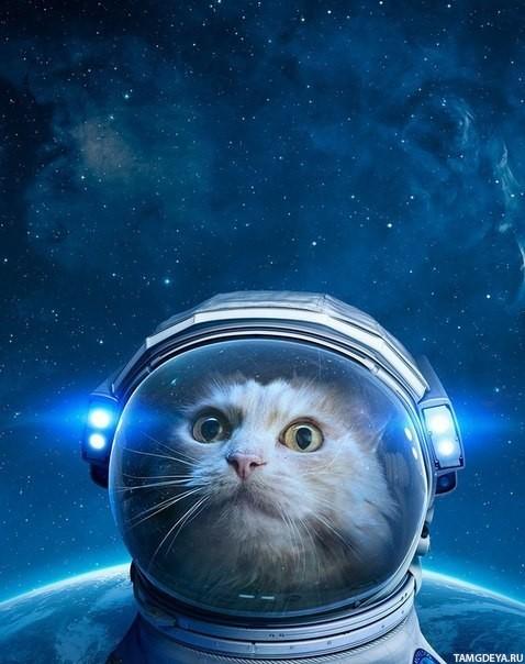 Классные и прикольные картинки на аву космос и звезды - подборка 15