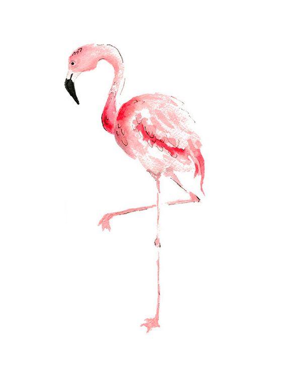 Красивые картинки фламинго для срисовки - интересная подборка 10