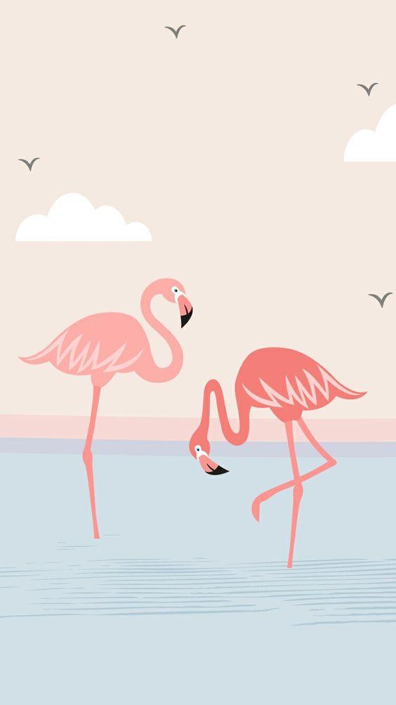 Красивые картинки фламинго для срисовки - интересная подборка 11
