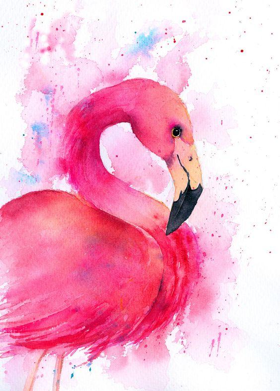 Красивые картинки фламинго для срисовки - интересная подборка 12