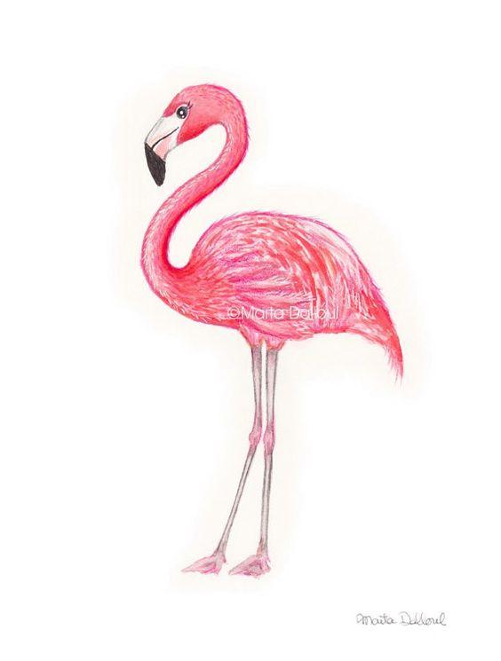 Красивые картинки фламинго для срисовки - интересная подборка 6