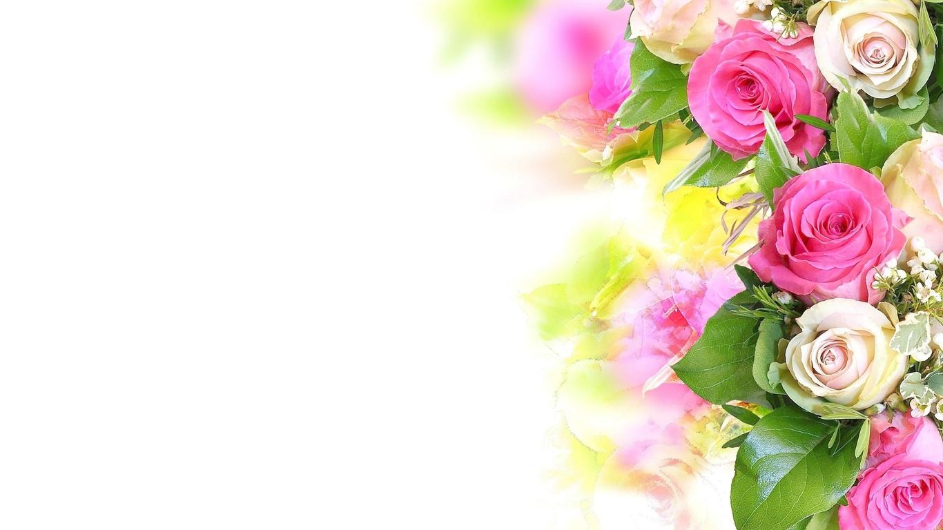 Красивые обои розы на рабочий стол - интересная коллекция 13