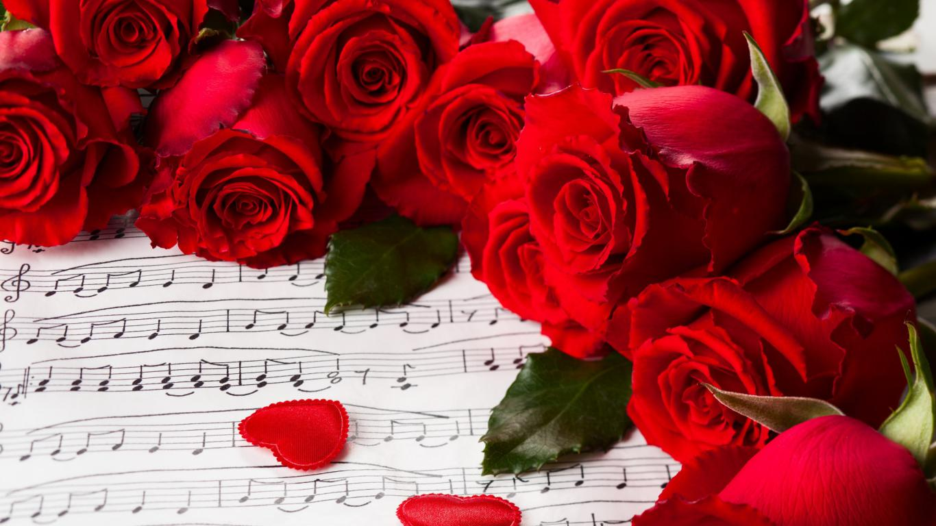 Красивые обои розы на рабочий стол - интересная коллекция 14