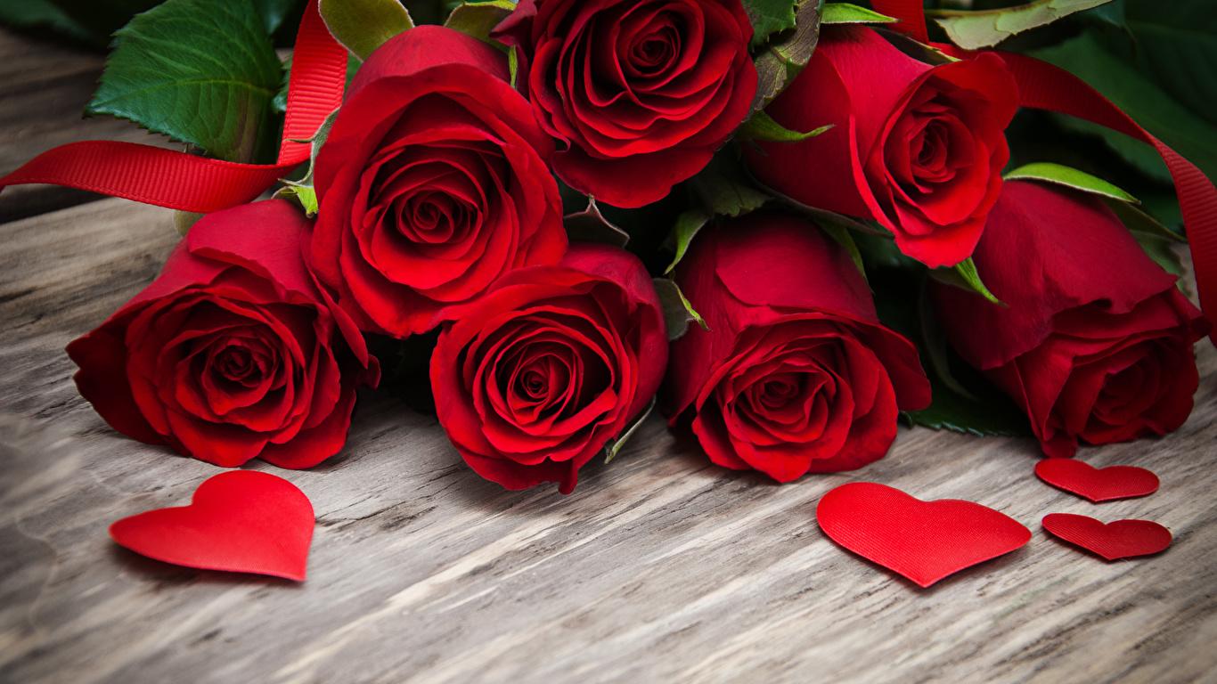 Красивые обои розы на рабочий стол - интересная коллекция 16
