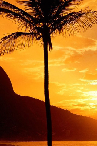 Крутые и красивые картинки на телефон закат, закат Солнца 10