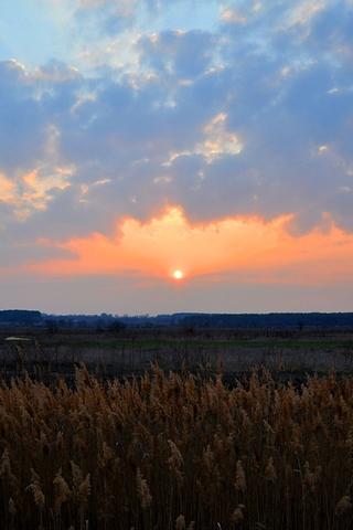 Крутые и красивые картинки на телефон закат, закат Солнца 12