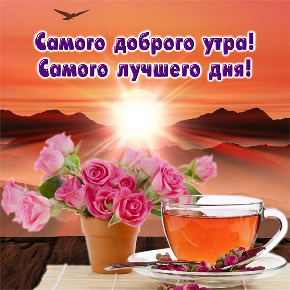 Милые картинки доброе или с добрым утром - красивая подборка 10